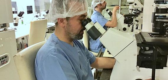Endoskopik Cerrahi (Histeroskopi & Laparoskopi)